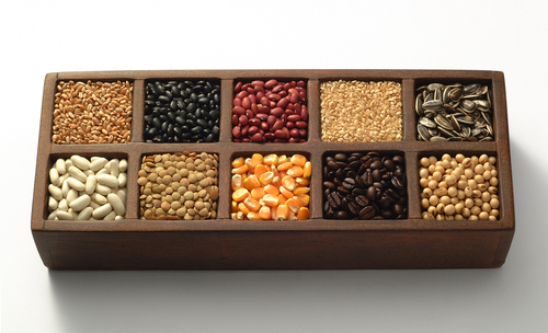Grains Nuts and Beans to Balance Blood Sugar levels